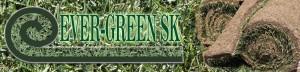 Ever-green_banner
